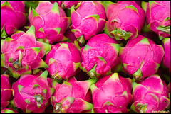 Dragon Fruits