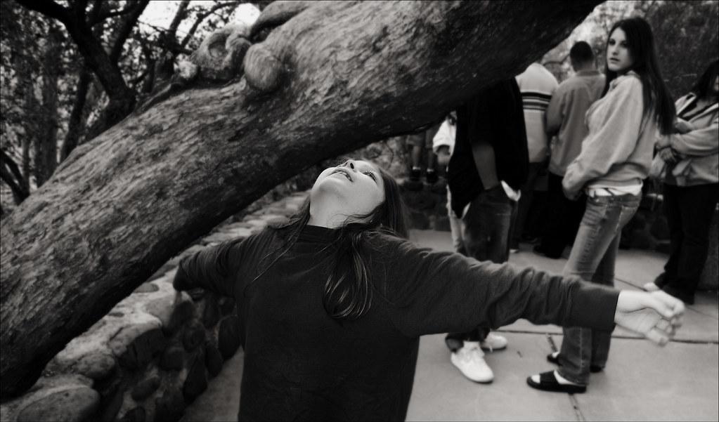 Boy Meets Tree