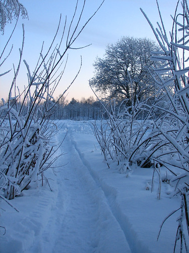 winter snow path pieksämäki