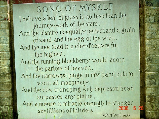 an analysis of the poem song of myself by walt whitman Song of myself , by walt whitman's background song of myself is a poem by walt whitman's this poem presents a continual stream of human consciousness, where he attempts to analyze death as natural and transformative process, which ought to occur to everybody.