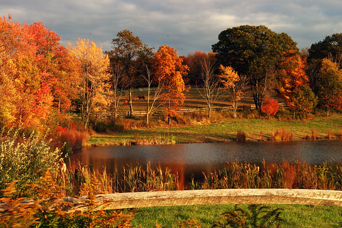 autumn fall landscape farm