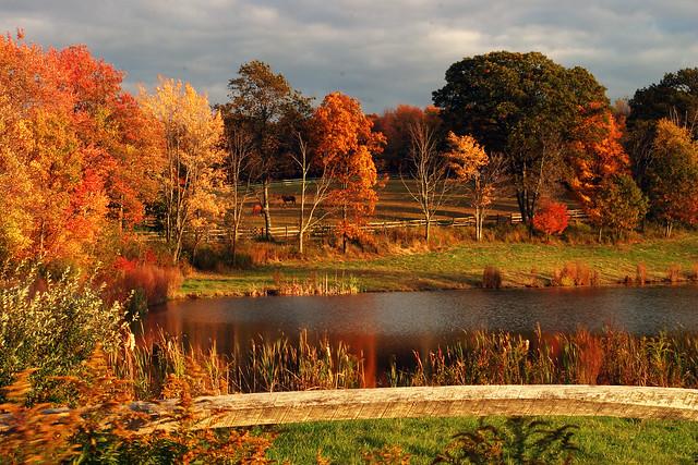 Fall scene flickr photo sharing - Pics of fall scenes ...