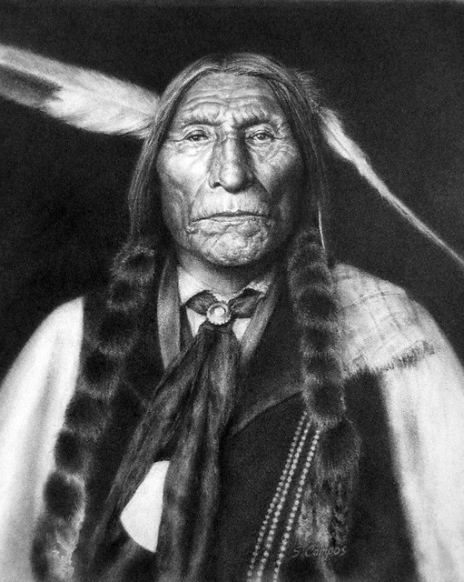 indian chief and wolf - photo #14
