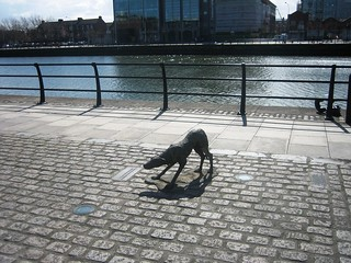 Docklands Dog