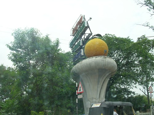 Nagpur Orange