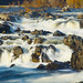 Small photo of Great Falls