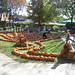 Small photo of St. Alcuin Pumpkin Maze