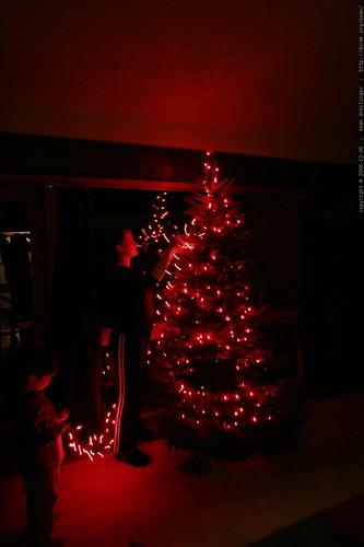 rachel and nick stringing lights    MG 6419