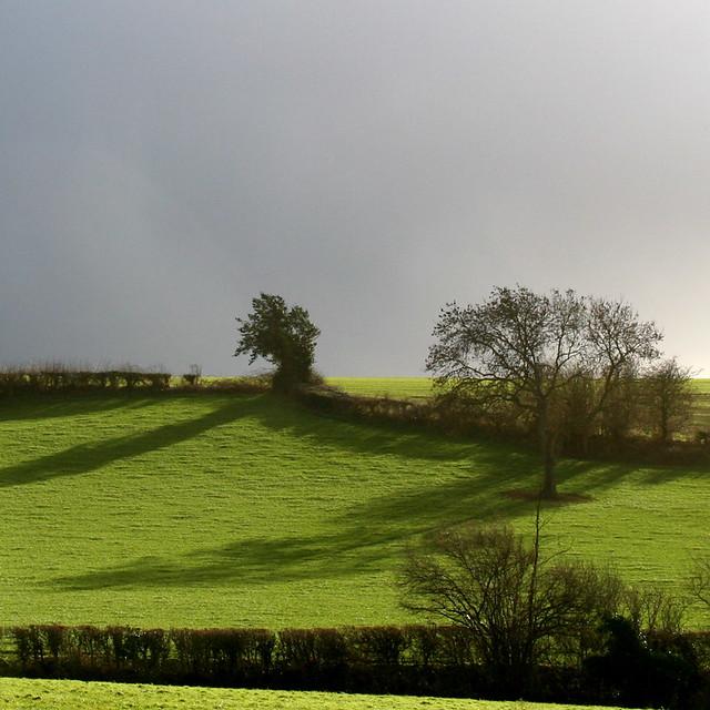 Landscaping A Sunny Hillside : Sunny hillside dark sky flickr photo sharing