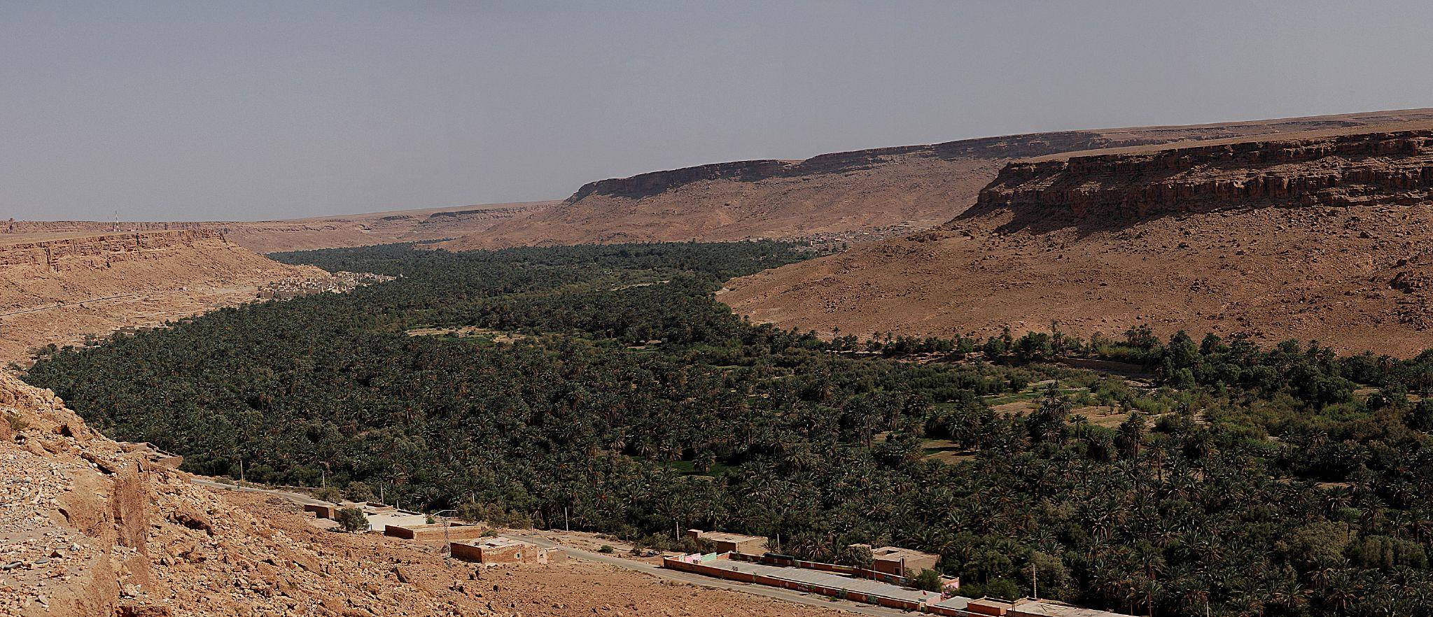 Oáza v údolí rieky Ziz