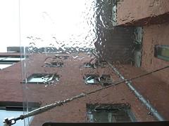 Glass Celing