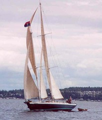 sail, sailboat, sailing ship, keelboat, vehicle, sailing, mast, watercraft, dinghy sailing, boat,