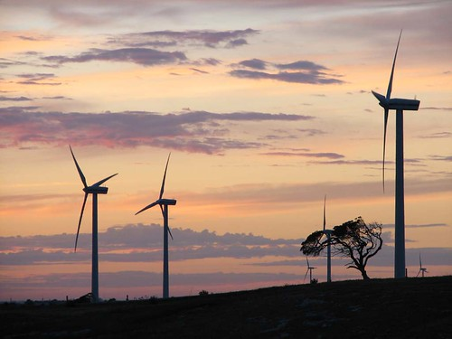 位於南澳洲的風力發電廠。(來源:David Clarke)