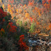 Autumn in the Canyon. by BamaWester