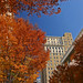 Autumn in downtown Winston-Salem