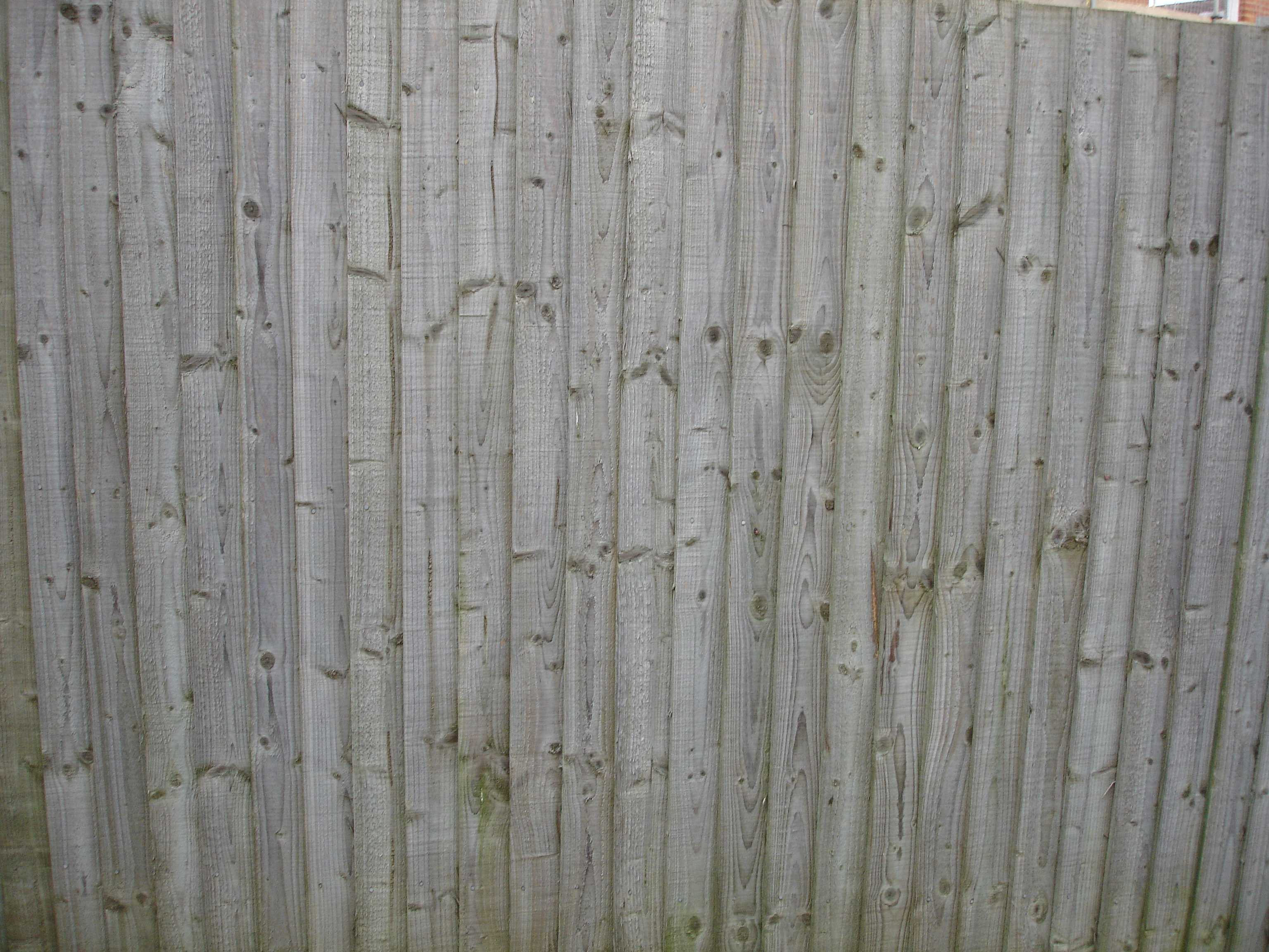 Amazing photo of Wood fence panel Flickr Photo Sharing! with #4C4B3A color and 3072x2304 pixels