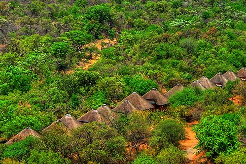 Bushland in South Africa