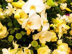 Bouquet of cream taste