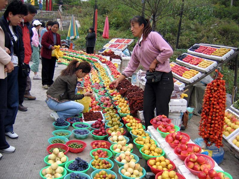 People: Fruit market on road to Jian