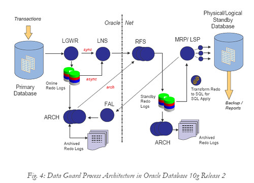 Data guard process architecture in oracle database 10g rel for Oracle 10 g architecture