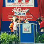 Slovenia.RFC.WDC.15jun96