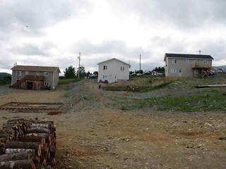 "Looking up the lot (the ""before"" pictures)"