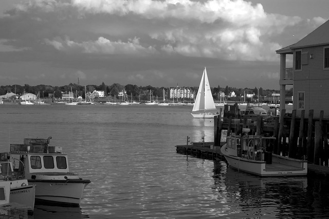 Across the Water (BW)