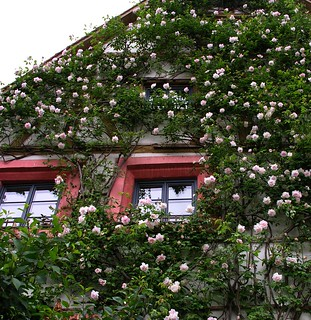 Sleeping Beauty´s home in Bamberg