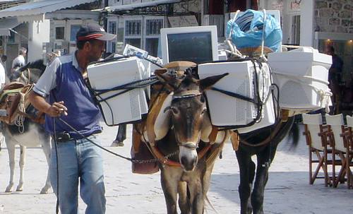 Donkeys with computers in Greece