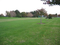 Wattle Downs Golf & Country Club