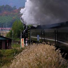 one day trip by steam locomotive / SL山口線
