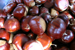 chestnut, nuts & seeds, produce, food, nut,