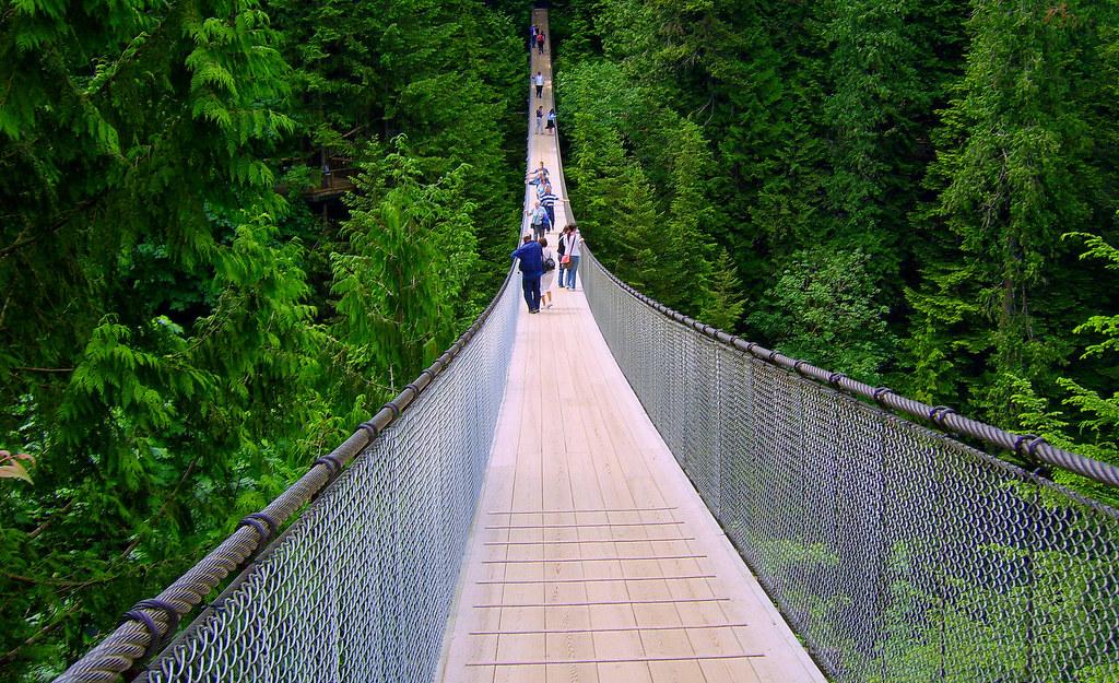 Bridge Between...