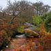 A North York Moors stream.