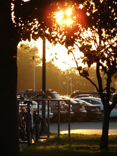 sunset parkinglot usf