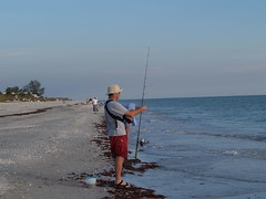 beach, fishing, sea, recreation, ocean, casting fishing, outdoor recreation, surf fishing, vacation, shore, coast, fisherman,