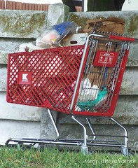 vehicle(0.0), shopping cart(1.0), cart(1.0),