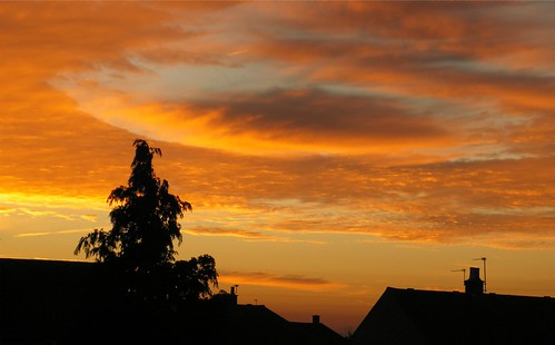 light shadow red sky orange cloud tree silhouette skyline sunrise oxfordshire witney catchycolorsorange