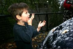 tasting snowflakes    MG 6274