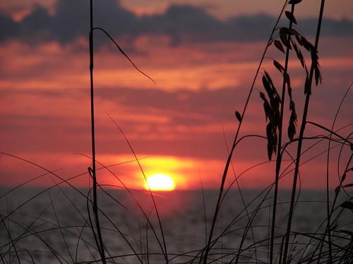 ocean sunset sky orange usa sun seascape black beach gulfofmexico nature water colors silhouette yellow clouds tramonto sonnenuntergang florida sony horizon pôrdosol sanibel sinking seaoats captiva puestadelsol coucherdusoleil blindpass dsch2 bestnaturetnc06 artistsoftheyear superperfectphotographer oceansofwondercontest