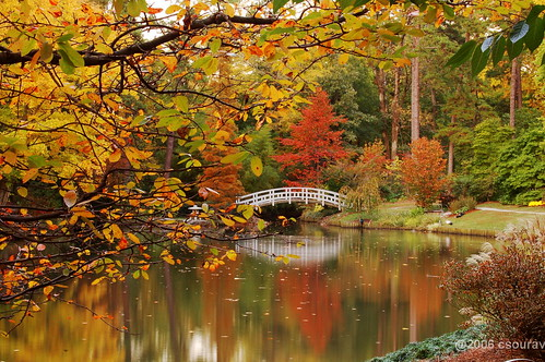 Duke Garden, Raleigh, North Carolina