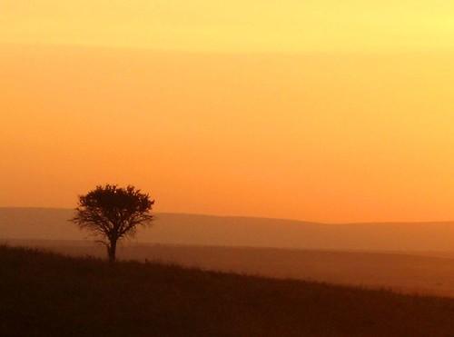 africa sunrise ilovenature kenya masaimara sunriseglow p1f1 blinksuperstars