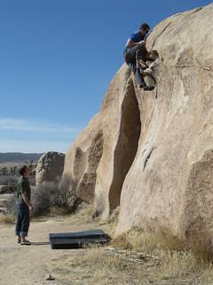 Jtree bouldering