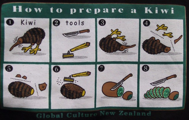 Anatomy of a kiwi bird. : pics