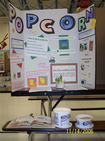 Science Fair Projects with Pop http://www.flickr.com/photos/mrsrum/304590162/