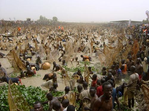 Argungun Fishing Festival, Kebbi State, Nigéria