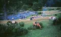 Cabalgatas andinas