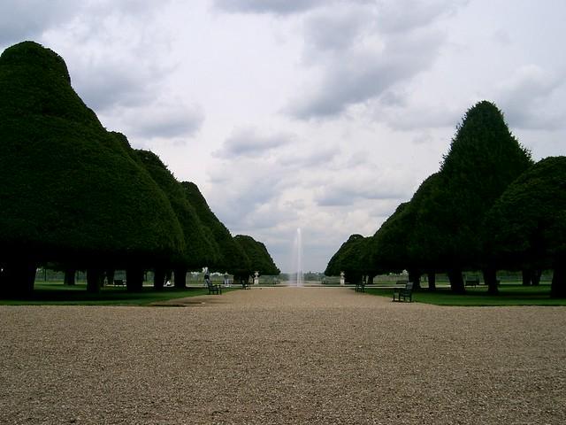 Roses In Garden: Hampton Court Palace Gardens