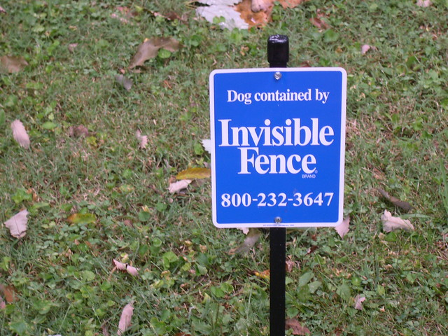 Invisible Fence Dog Collar