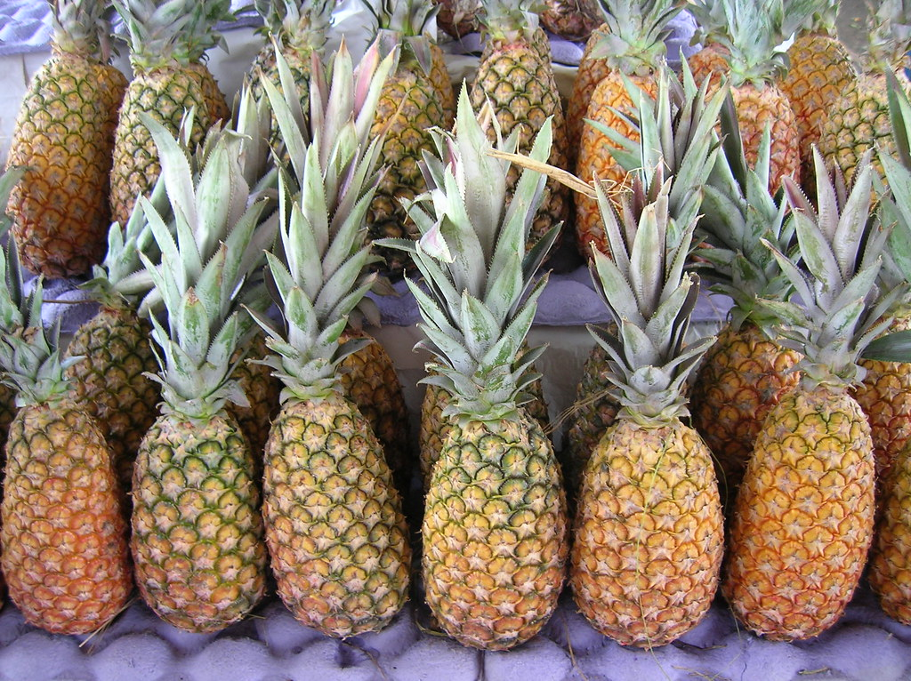 pineapple raw, traditional varieties